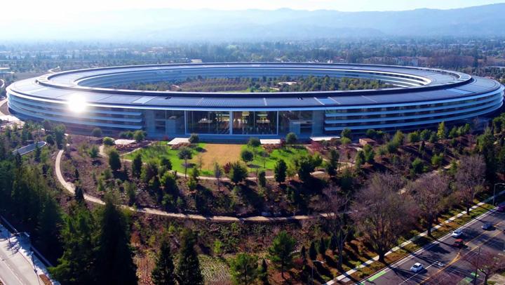 apple 1 Angajatii Apple Park se lovesc la cap din cauza peretilor din sticla
