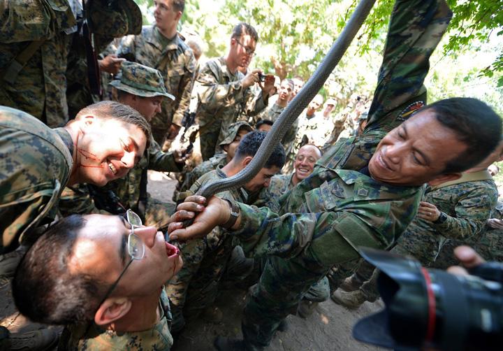 soldati cobra Soldatii americani beau sange de cobra