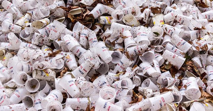 tacamuri plastic Franta interzice tacamurile si vesela din plastic