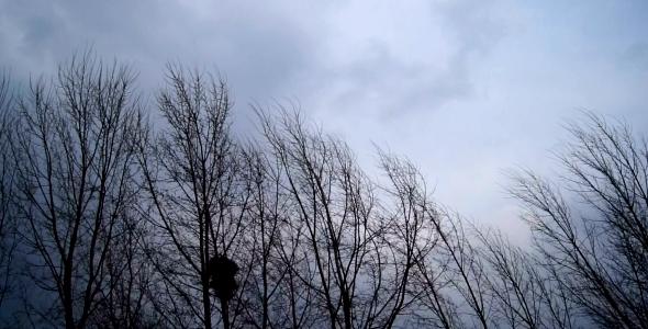 vant Avertizari de vant si ceata pentru mai multe zone din tara