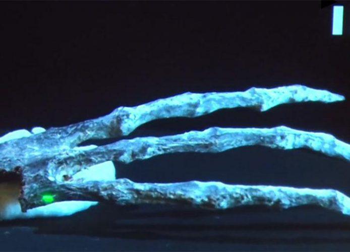 alien 00 694x500 Mumia extraterestrului cu trei degete