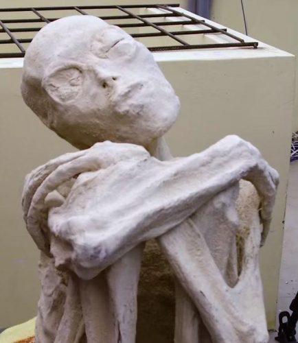alien2 434x500 Mumia extraterestrului cu trei degete