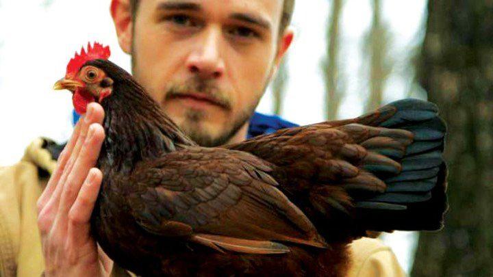 chickenpeo 720x405 Trend: gaini cu pampersi si bucatar personal