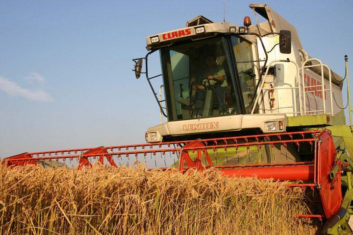 seic 2 720x480 Un seic din Emirate cumpara cea mai mare ferma din Romania