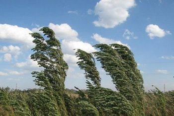 vant cod 350x234 Meteorologii au emis o avertizare COD GALBEN, valabila pana la 21.30