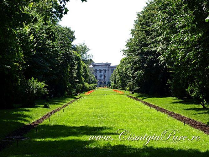 Cismigiu vara2012 010 667x500 Cişmigiu, grădina culturii (II)