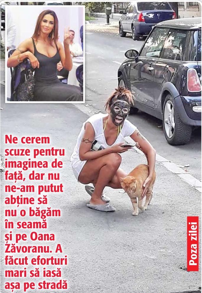 aaaa01 Poza Zilei