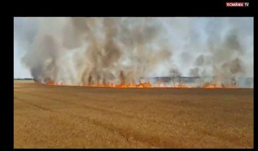 incendiu 1 Incendiu cu urmari insemnate pe un camp din Prahova (VIDEO)
