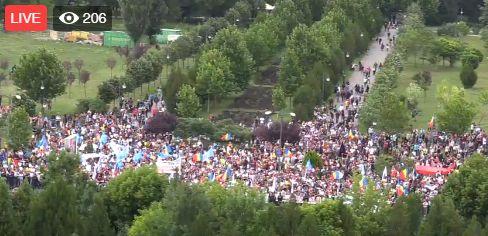 protest Au iesit la protest in Parcul Izvor, pana sa inceapa votul la motiune