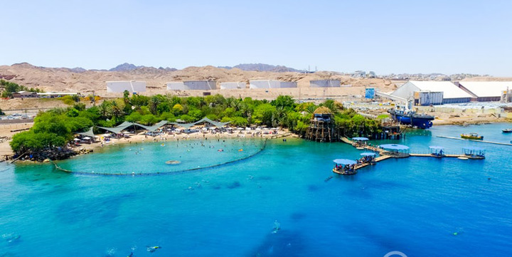 dolphin reef beach 586341c84390d 1 Cele mai tari plaje ale anului