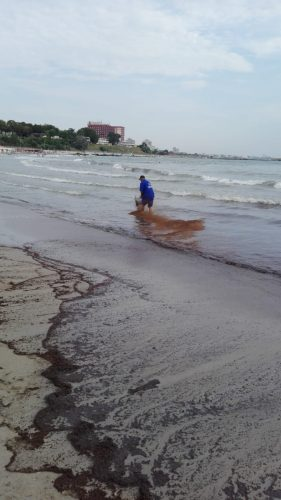 poluare 2 281x500 Poluare pe litoral. O portiune de plaja din Mangalia, inchisa