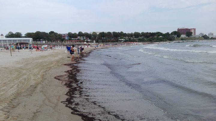 poluare 720x404 Poluare pe litoral. O portiune de plaja din Mangalia, inchisa
