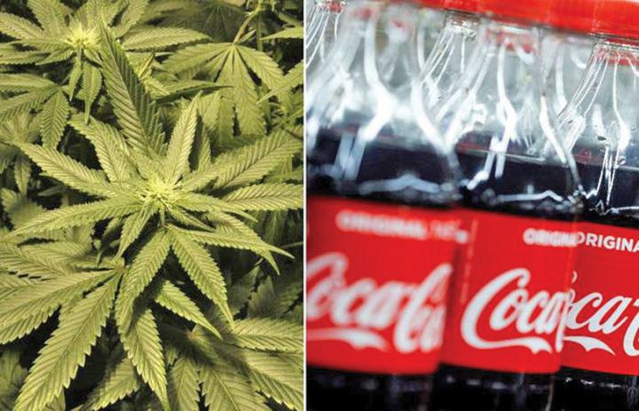 coca Coca Cola trece pe canabis