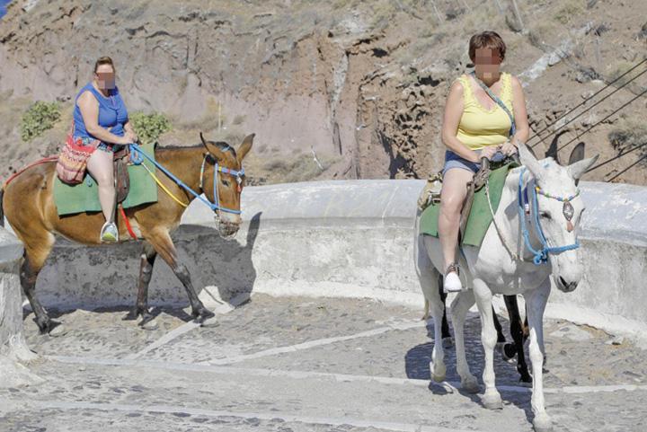 grecia 3 Grecia pune la punct turistii grasi