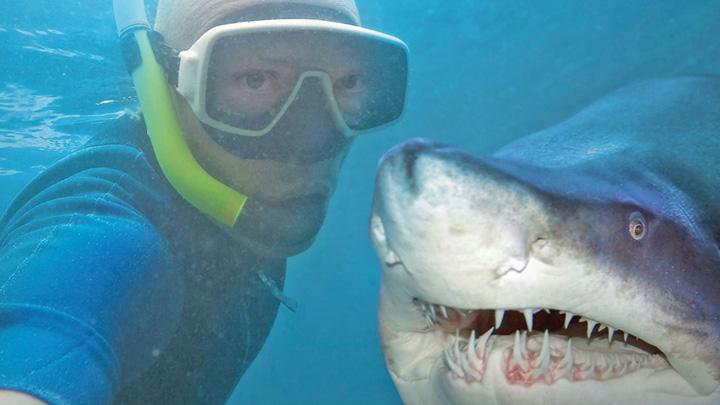 selfie rechini Selfie, mai periculos decat atacul rechinilor