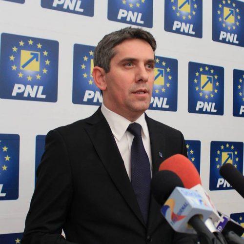 danca 500x500 Danca anunta ca PNL ul va boicota toate plenurile conduse de Dragnea si Iordache
