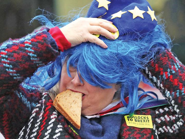 brexit vote protesters 1 Brexit, halca de carne aruncata UE