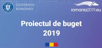 proiect 350x167 Proiectul de buget pe 2019. Prezentarea facuta publica de Guvern