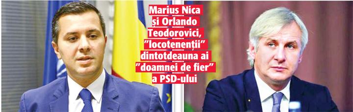 """02 03 12 """"Scheletii""""  lui Rovana!"""