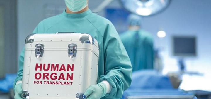 spania detine de peste 24 de ani recordul mondial la donarea de organe 34931 Nemtii vor putea decide de la 16 ani daca doresc sa si doneze organele