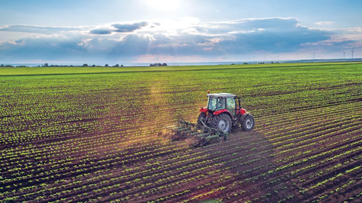agricultura Apreciem agricultura, dar fugim de sapa